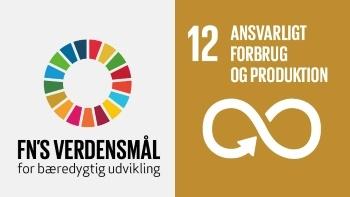 Npvision Group går hånd i hånd med Fn's Verdensmål nr. 12